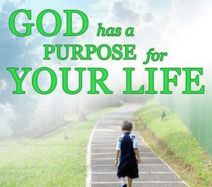 life, purpose